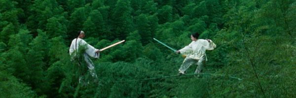 Crouching Tiger, Hidden Dragon II: The Green Legend (2015)