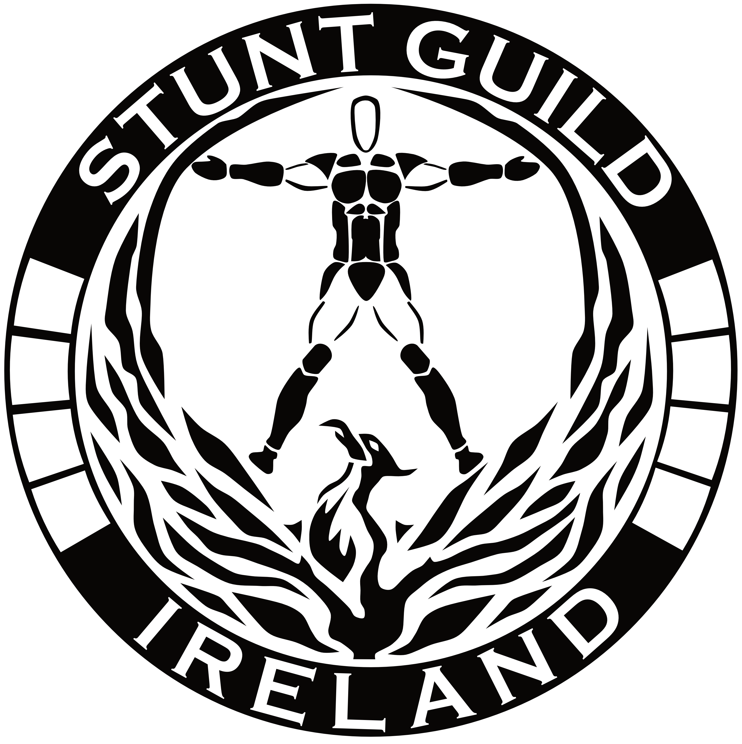Stunt Guild Ireland